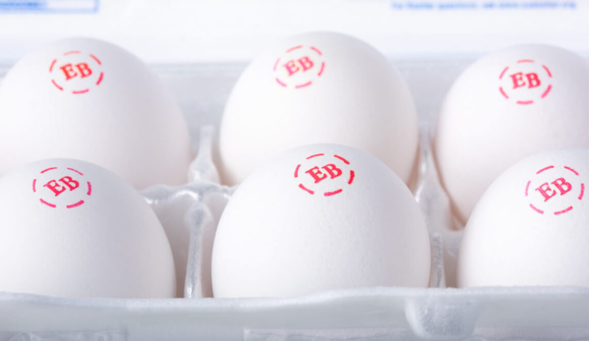 Six Eggland's Best eggs in a carton.