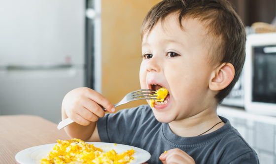 When Should You Introduce Eggs to Babies?