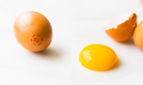 Why EB Eggs should be the Most Popular Ingredient in Home Beauty Care Right Now