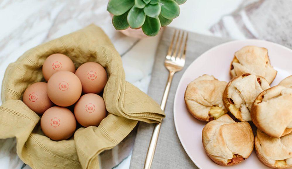 "Eggland's Best Eggs, Bacon & Cheese ""School Rolls"""