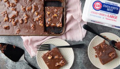 Everyone's Favorite Butter-Nut Texas Chocolate Sheet Cake