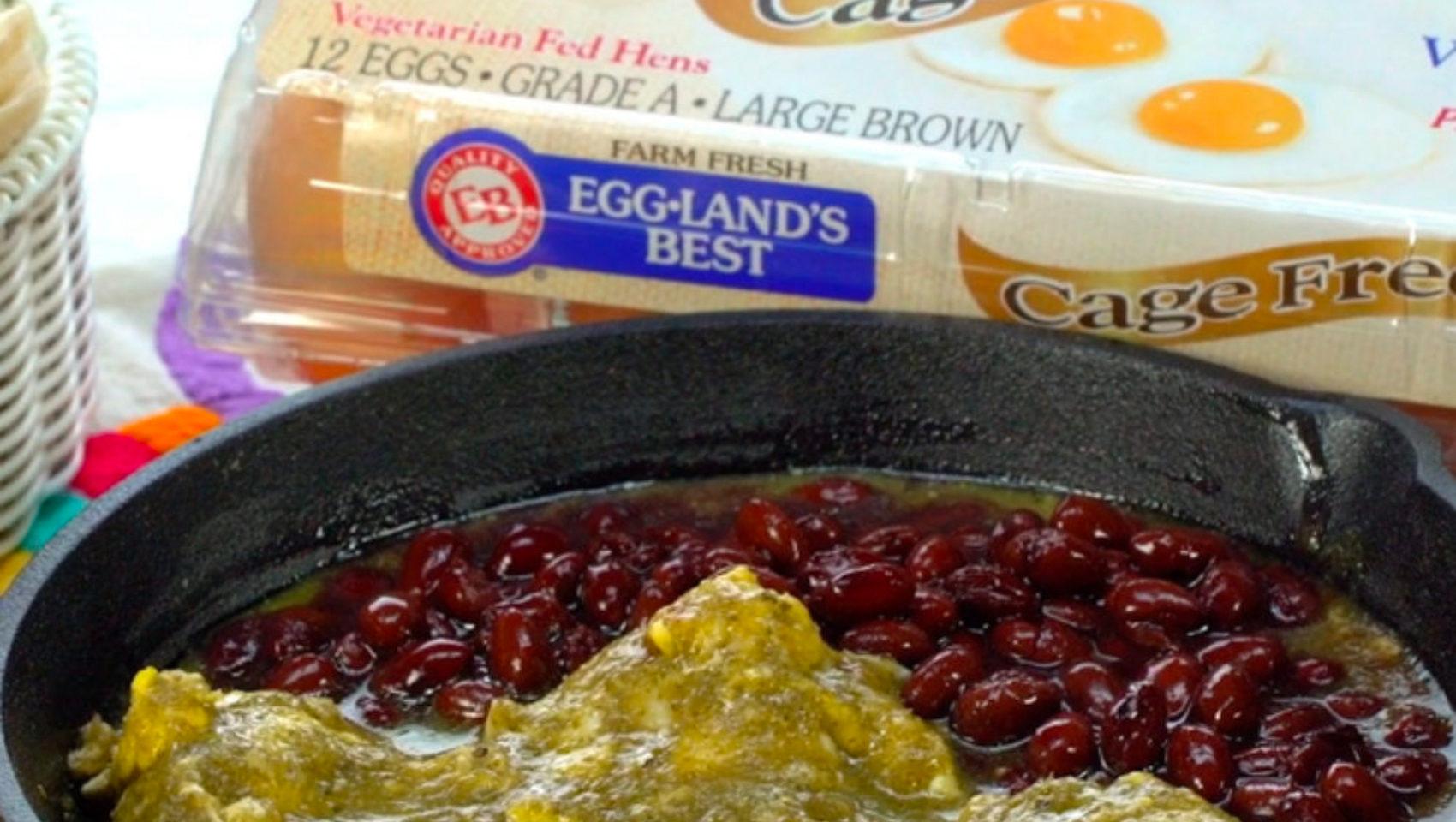 Salsa Verde Eggs with Egglands Best