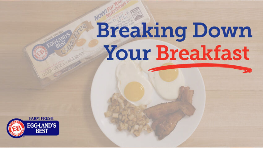 Youtube Cover Breakingdown your Bfast