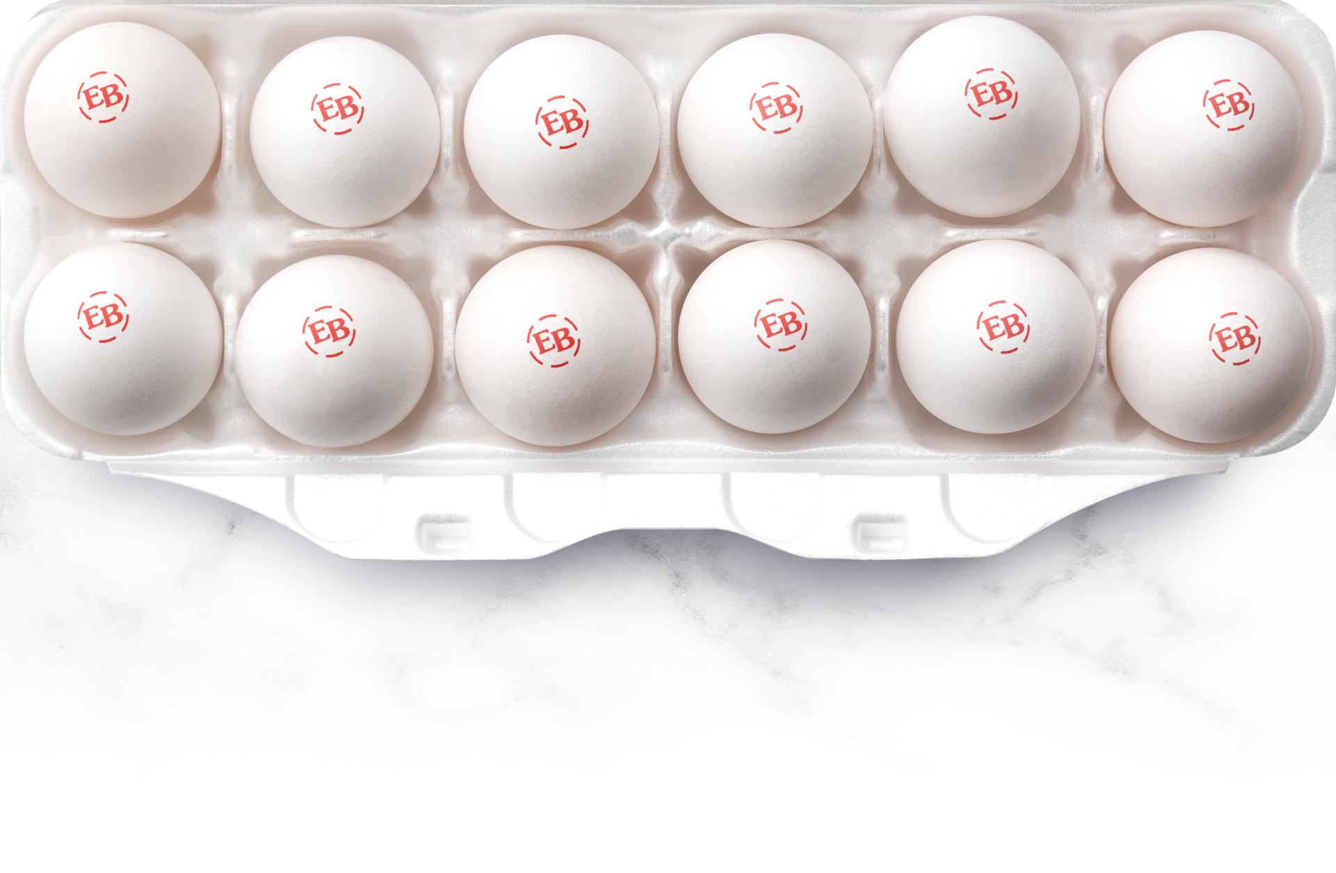 A carton of Eggland's Best Eggs