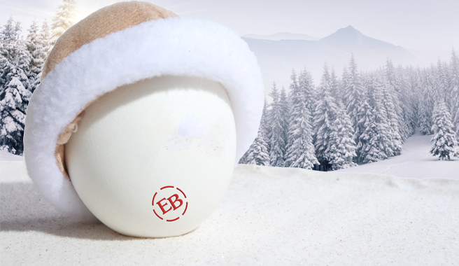 Getting Vitamin D in the Winter with Eggland's Best