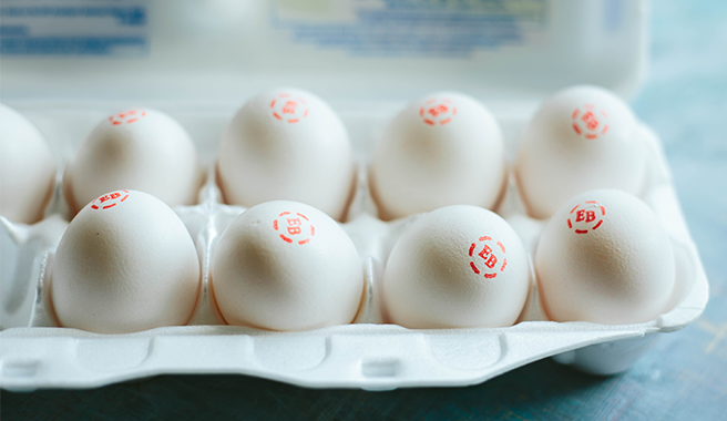 The Versatility of Eggland's Best Eggs